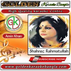 Parina Vule Jete Sritira Mala Gethe | পারিনা ভুলে যেতে | Bangla Karaoke | Shahnaz Rahmatullah