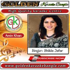 Bhulite Parina Tare | ভুলিতে পারিনা তারে | Bangla karaoke By Shakila Zafar