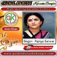 Nai Teliphone Naire Pion | নাই টেলিফোন নাইরে পিয়ন | Bangla Karaoke | Papiya Sarwar